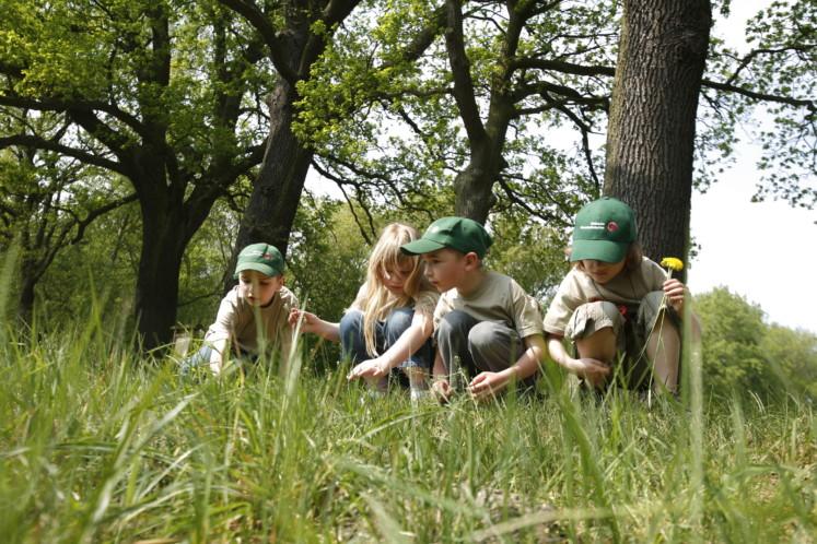 Junior Ranger im BR Drömling (Archivbild)