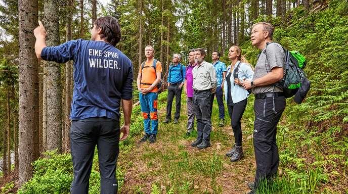 Rundgang durch das Waldklassenzimmer im Nationalpark